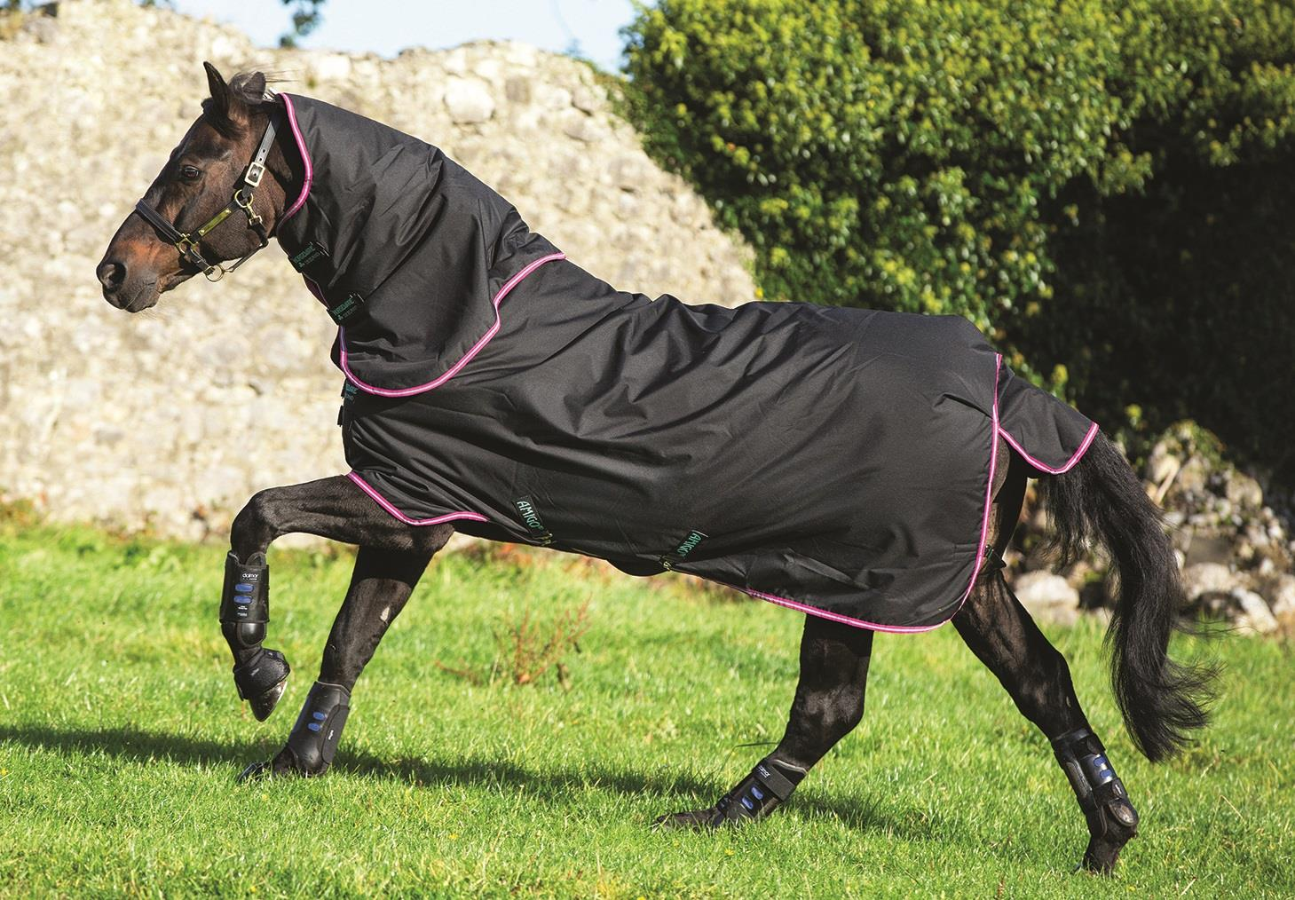 Cheap Horse Rugs Online Uk Taraba Home Review