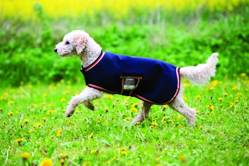 Sheepskin Dog Rugs