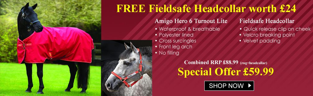 FREE field safe head collar with the Amigo Hero 6