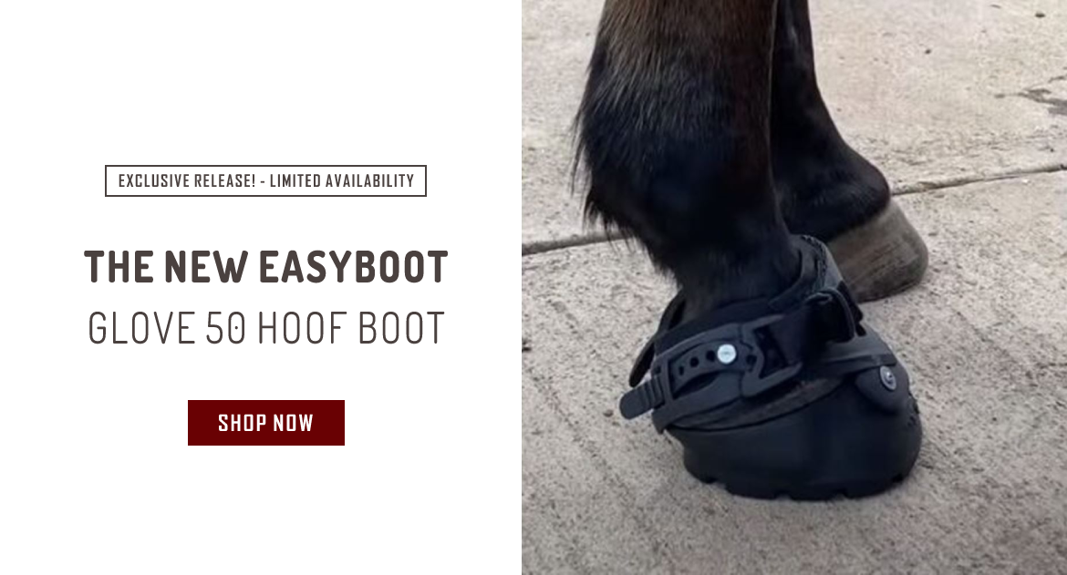 Exclusive: The NEW Easyboot Glove 50 (Pre)Release! Limited Stock Available!