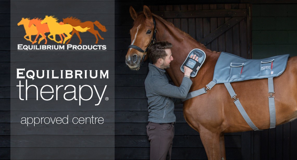 Equilibrium therapy products for horses