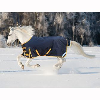 Shires Winter StormBreaker *Special Offer*
