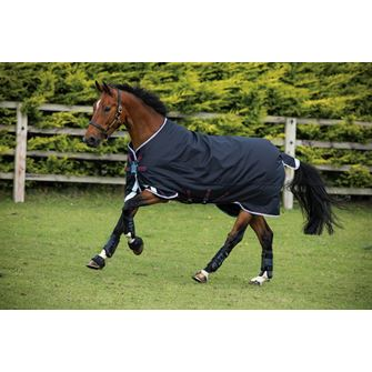 Horseware Amigo Bravo 12 Original Lite 150g Turnout Rug with Disc Front Closure