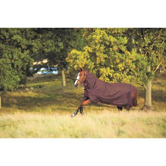 Horseware Amigo Hero 6 Plus Heavy 350g Turnout Rug SPECIAL!