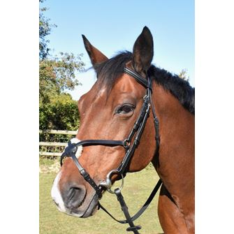 JHL Grackle Bridle with Reins