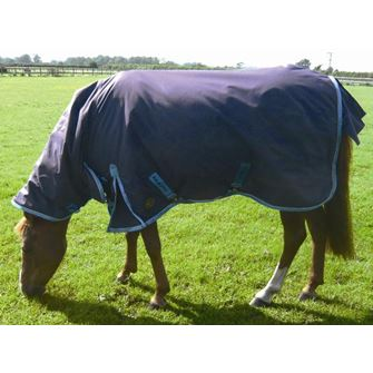 Mark Todd Heavyweight Pony Turnout Rug Combo