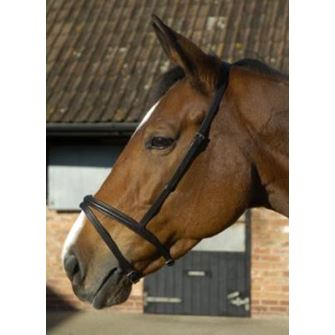 JHL Flash Noseband