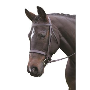New Kincade Hunt Cavesson Bridle with Reins
