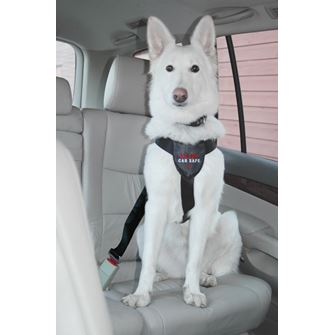 Clix CarSafe Dog Harness - Large
