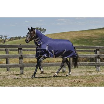 Weatherbeeta Comfitec Essential Lite Plus Combo 50g Turnout Rug