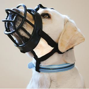 Baskerville Ultra Dog Muzzle - Size 6