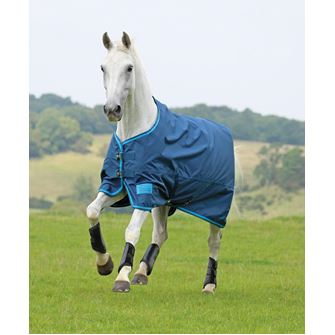 "Shires Tempest Original Lite Turnout Rug (4'0"" - 7'3"")"