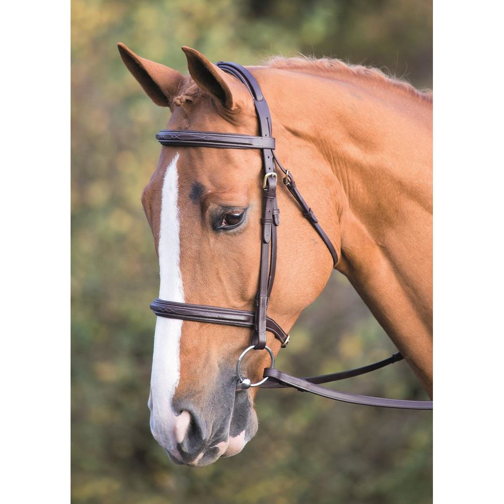 Shires Salisbury Fairford Raised Bridle
