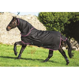 Horseware Amigo Hero 6 Plus Medium Turnout Rug 200g