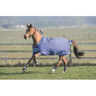 Saxon 600 Standard Neck Medium Turnout Rug