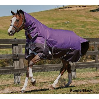 Weatherbeeta ComFitec Plus Dynamic Combo Medium Lite Turnout Rug