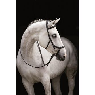 Rambo Micklem Deluxe Competition Bridle English Leather (No reins)