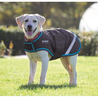 Shires Waterproof Dog Coat M-XXL