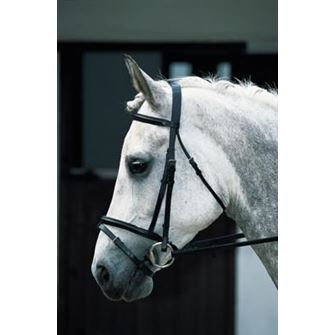 JHL Flash Bridle with Reins