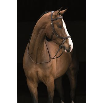 Rambo Micklem MultiBridle (bitted, bitless and lunge cavesson) No Reins