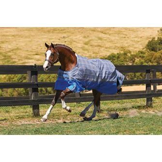 Weatherbeeta Comfitec Premier Free Standard Neck Lightweight Turnout Rug *Special Offer*
