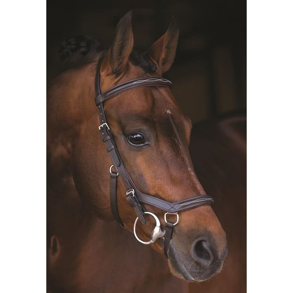 Rambo Micklem Deluxe Competition Bridle No Reins