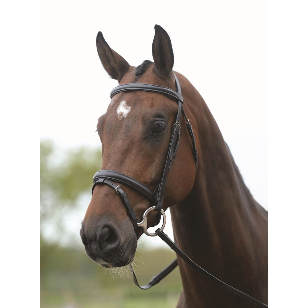 KIncade Flash Bridle with Reins RRP £36.99 New Pony