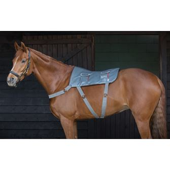 Equilibrium Therapy Horse Massage Pad Standard