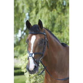 Mark Todd Padded Grackle Bridle