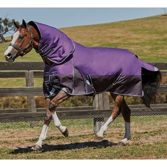 Weatherbeeta ComFitec Plus Dynamic Detach-A-Neck Medium Lite Turnout Rug