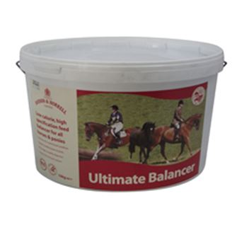Dodson & Horrell Ultimate Balancer 10 Kg