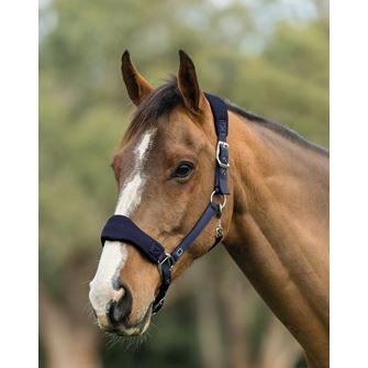 Roma Air Mesh Headcollar