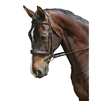 Collegiate Padded Headpiece Cavesson Bridle