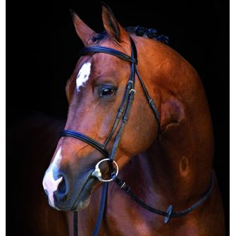 Horseware Ireland Amigo Mio Bridle with Reins