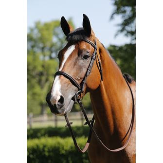 JHL Raised Cavesson Bridle with Reins