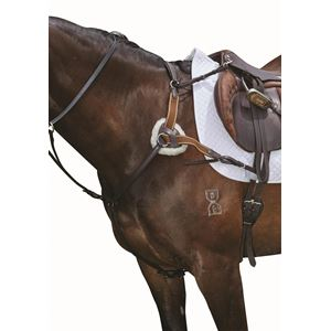 Collegiate 5 Point Breastplate