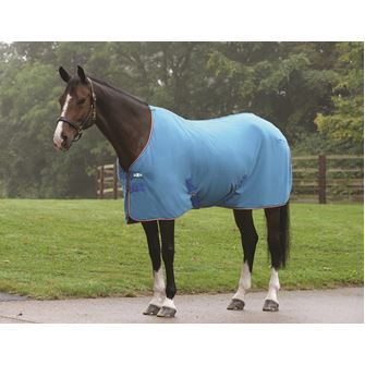 Saxon Coordinate Polar Fleece Standard Neck Rug
