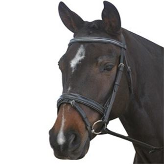 New Kincade Dressage Crank Bridle with Reins