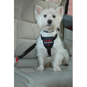 Clix CarSafe Dog Harness - Small