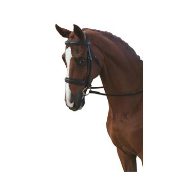 Collegiate Raised Cavesson Bridle