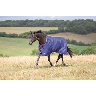 Shires Tempest Original 100 Turnout Rug