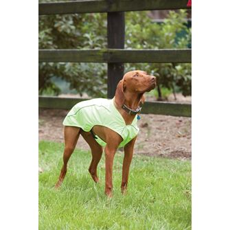 Weatherbeeta Reflective Exercise Dog Coat