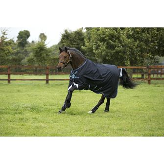 Horseware Amigo Bravo 12 Lite 0g Turnout Rug with Disc Front Closure