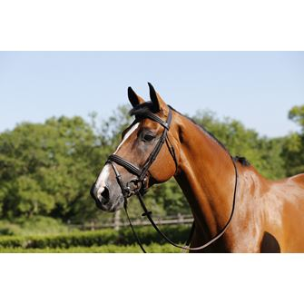 Mark Todd Double Raised Bridle