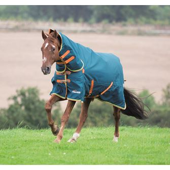 Shires Highlander Plus 350 Combo Turnout Rug *Special Offer*