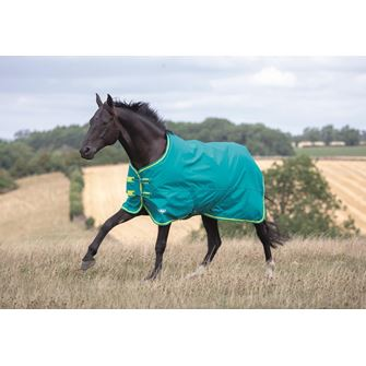 Shires Tempest Original 50g Turnout Rug