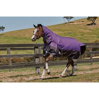 Weatherbeeta ComFitec Plus Dynamic Combo Lite Turnout Rug *Special Offer*