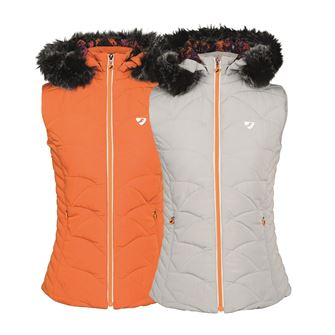 Shires Aubrion Thistledown Padded Ladies Gilet