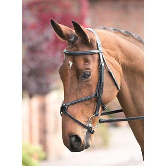 Shires Rossano Grackle Bridle with Reins