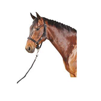 Roma Nylon Headcollar with Neoprene Lining and Leadrope